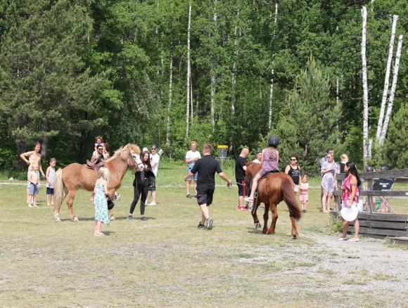 Några av islandshästarna som bor på Örnäs kom på besök.