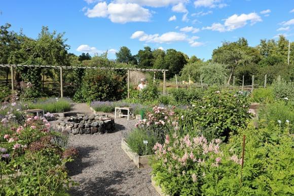 I kryddträdgården finns sittplatser som bjuder in till \