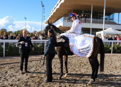 Hästen Buddy Bob med jockeyn Jan-Erik Neuroth vann premiärlöpet av Upplands-Bro kommuns Stora Pris.