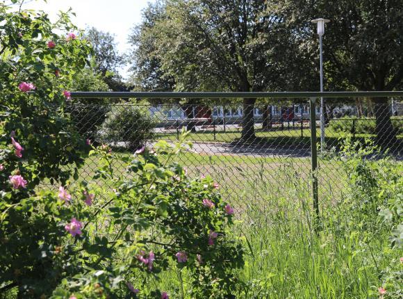 Råbyskolans skolgård har en stor, härligt parkliknande, gräsyta med träd och lekytor likväl som den mer traditionella skolgårdsasfaltsytan. Utemiljön kommer att lyftas ytterligare av den renovering som pågår och när barnen kommer tillbaka i augusti hittar de garanterat flera trevliga nytillskott på skolgården som kommer att locka till aktivitet och rörelse.