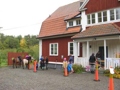 Arkivbild från Säbyholmsmarknaden 2012. Även då fanns möjlighet till ponnyridning!