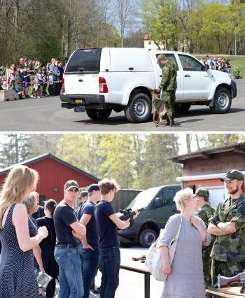 Militärhundarna visade upp sig hur det går till när de söker efter sprängämnen eller annat på fordon.
