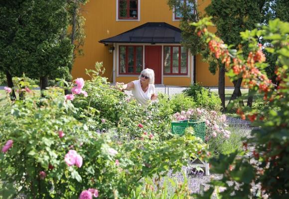 Kryddträdgården på Almare Stäket anlades av grevinnan Sonja Björnstjerna i mitten av 1960-talet. Under många år stod den i \