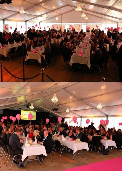 Årets gala anordnades på Tammsvik. Själva galamiddagen hölls i ett stort tält som hyrts in enkom för lördagens festligheter. Röda mattan var i år utbytt till en flamingorosa dito.