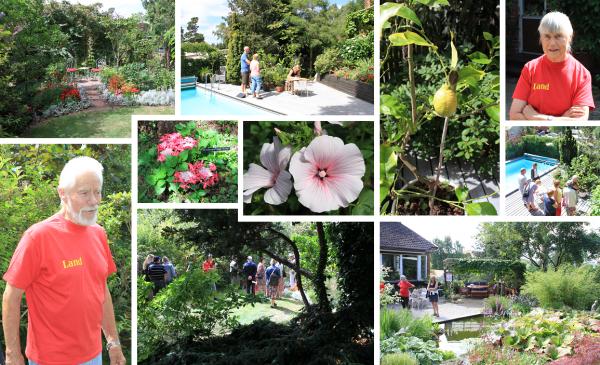 Torsten och Runa Walderö (i röda t-shirts) bjöd på söndagen in allmänheten till sin fantastiska trädgård i Kungsängen. Imponerande, inspirerande och inte så lite avundsvärd växtprakt mötte besökarna.