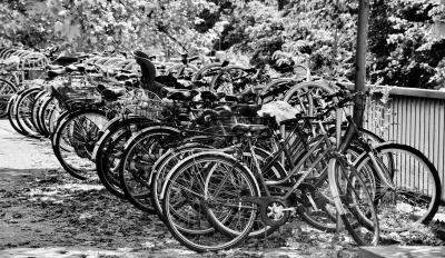 Nu kommer kommunen att rensa ur gamla orörda, trasiga cyklar ur cykelställen så att fler cyklister får möjlighet att hitta en plats för de cyklar som faktiskt används.