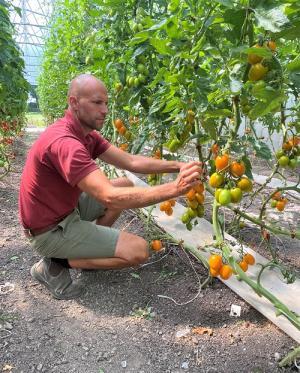 Daniel Bruce är växthusansvarig på Kvarnnibble.