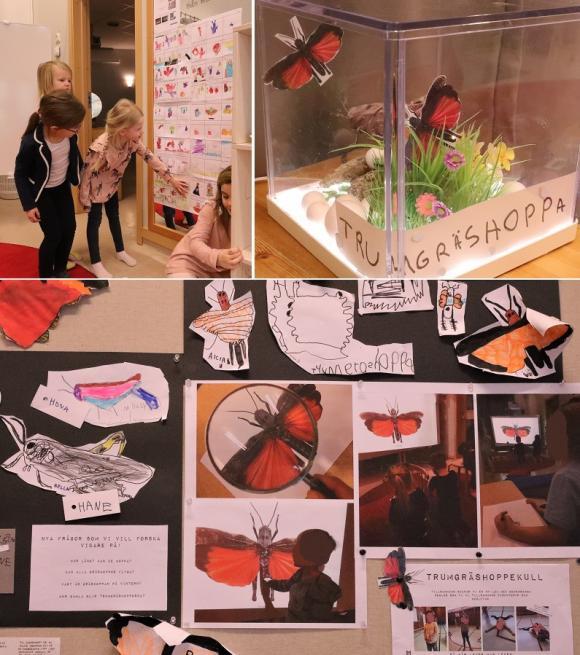 Barnen visar ivrigt sina filmmanus som de ritat och skrivit, och som sedan blivit till egna filmer om trumgräshoppan och dess äventyr.Molly, Klara, Alicia och Molly visar glatt runt och berättar om allt roligt de skapat och gjort.Överallt på avdelningen finns spår efter trumgräshoppeprojektet. På väggar och golv, i små tittskåp och i lärplattorna.