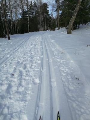 Promenad i skidspår är INTE OK. Visa hänsyn genom att gå vid sidan av spåren alternativt på någon av alla de promenadvägar som finns.