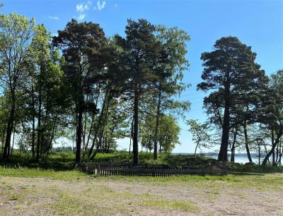 All sly och vildvuxna buskage är bortrensade så nu ser badplatsen återigen inbjudande ut.