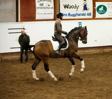 I bakgrunden syns Pether Markne. Hans make Per Sandgaard, landslagsryttare och tränare i dressyr, rider på hästen Charmeur.