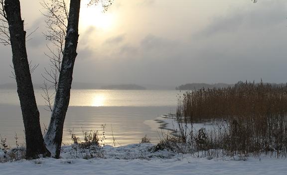 Vid Mälarens strand, Kungsängen.