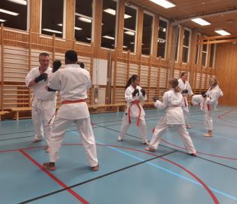 Karateklubben växer så det knakar. Barn, unga och vuxna är hjärtligt välkomna!