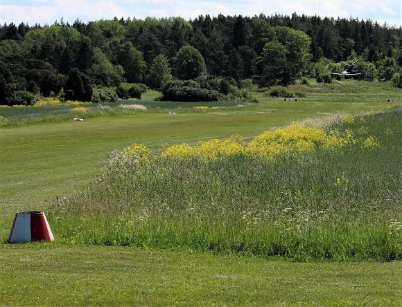 Ett plan på väg in för landning på det lilla gräsflygfältet.