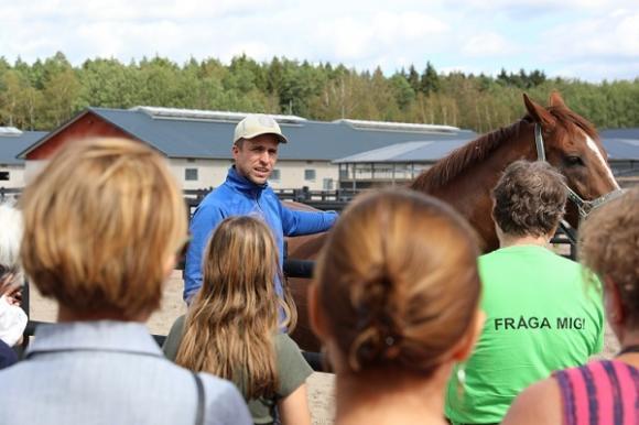 Julian presenterade Harry, sin allra bästa fyrbente vän, som numera är avslappnad pensionär men som varit tävlingshäst under många år.