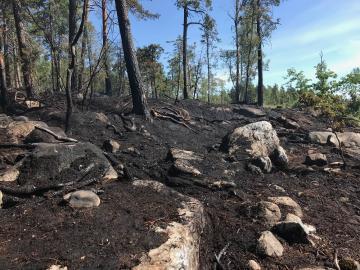 Arkivbild från maj 18, markbranden vid Kevans stugby.<br /><br />