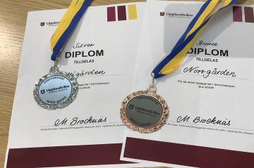 Äldre- och omsorgsboendena Norrgården och Allégården var några av pristagarna i Internationella Seniorkampen.